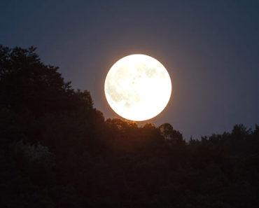 Si Alguna Vez Soñó Con Luna Y No Supo Lo Que Eso Pudo Significar Para Su Vida Real, ¡Vea Ahora Las Posibles Interpretaciones!