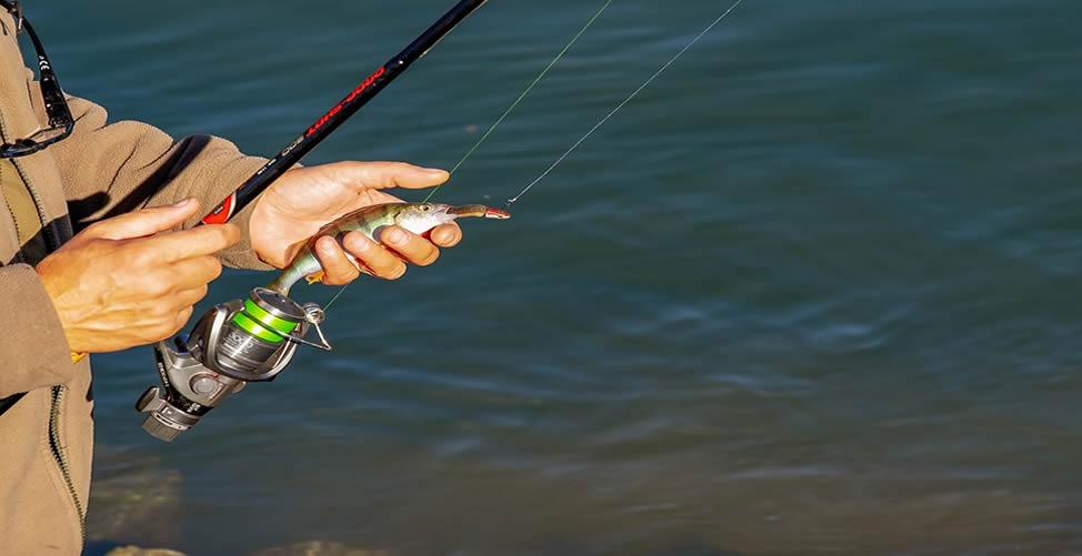 Soñar Con Pescar