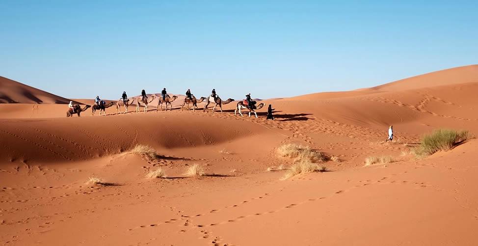Soñar Con Desierto